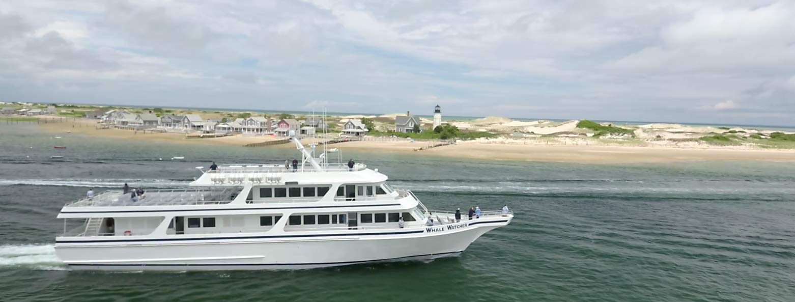 Hyannis Whale Watcher Cruises' Whale Watcher passes Sandy Neck